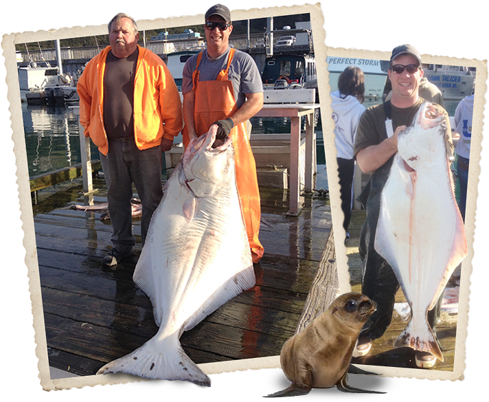 Whittier Fishing Charters