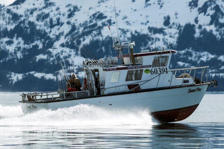whittier fishing boat